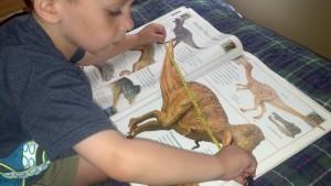 Measuring Dinosaurs!