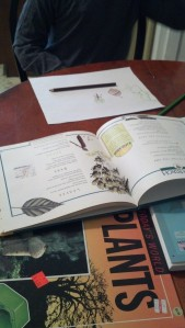 illustrating ideas