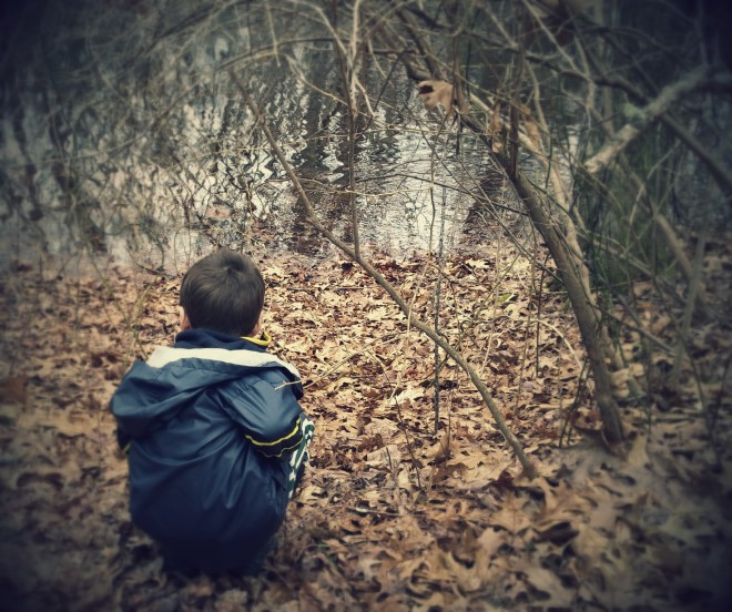 Looking for frogs